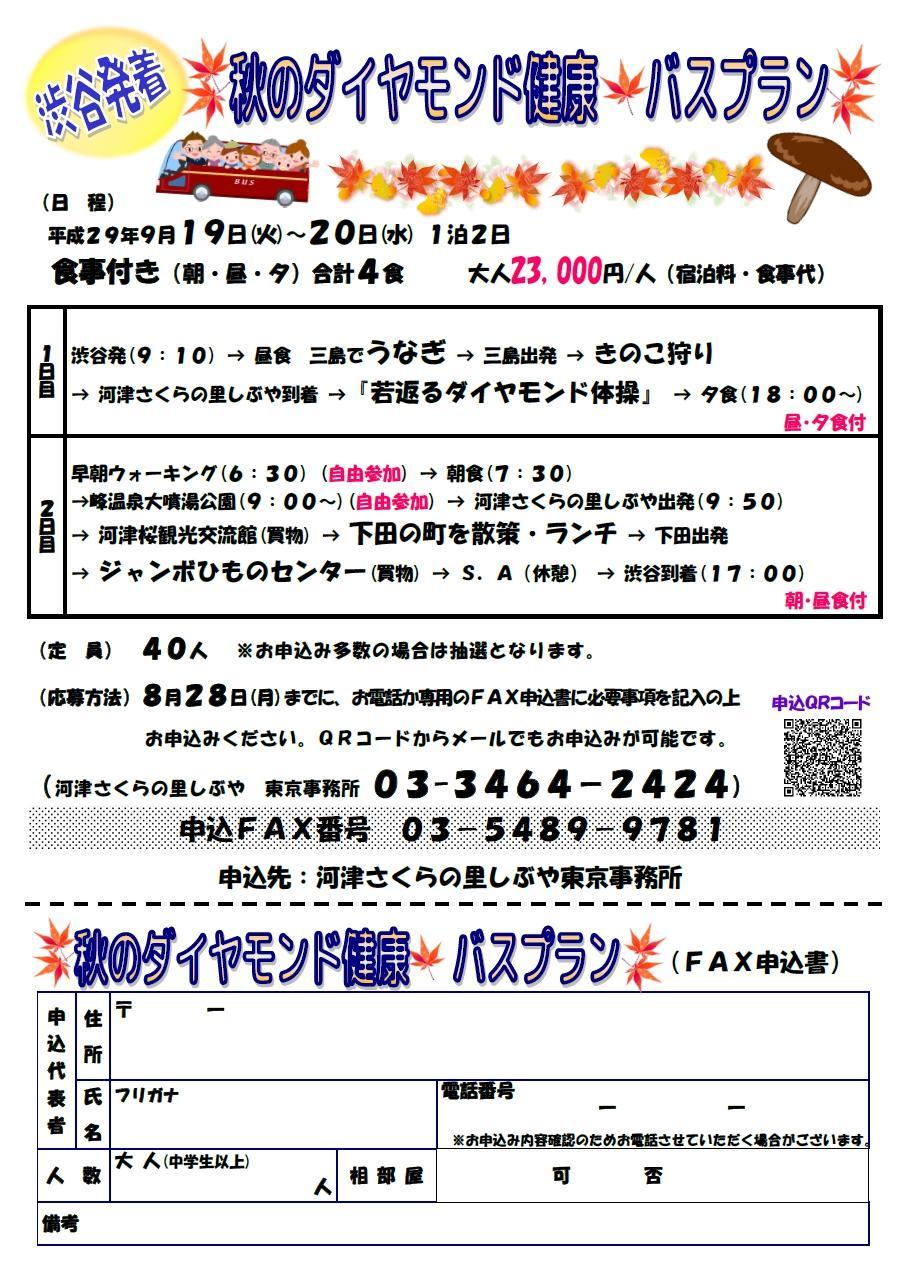 (最終版)H29.河津チラシ 9月プラン 裏.jpg